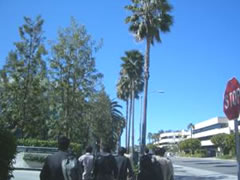 写真:限りなく青い空、カリフォルニアだなあ。