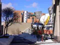 写真:MITの変なビル
