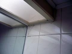 画像:バスルーム天井のクモの巣の写真